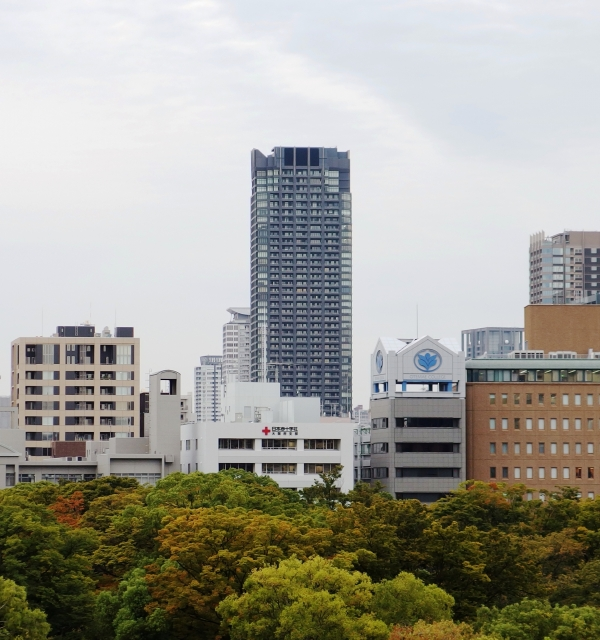 The Kitahama