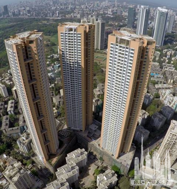 db woods towers