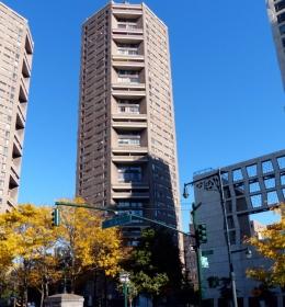 Arthur A. Schomburg Plaza I